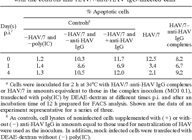 TABLE 1. Fraction of HAV/7-infected FRhK-4 cells with a DNA content of 2 N after transfection with poly(IC) in comparison with the controls and HAV/7-anti-HAV IgG-infected cellsa