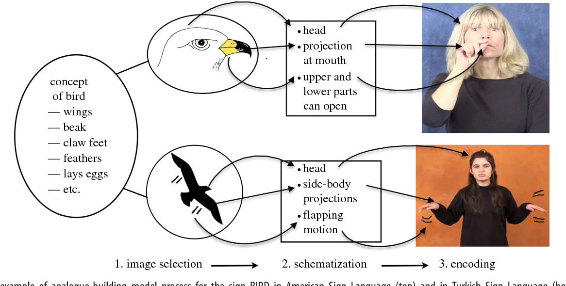 Figure 1 From Iconicity Impacts Linguistic Processes Metaphor And