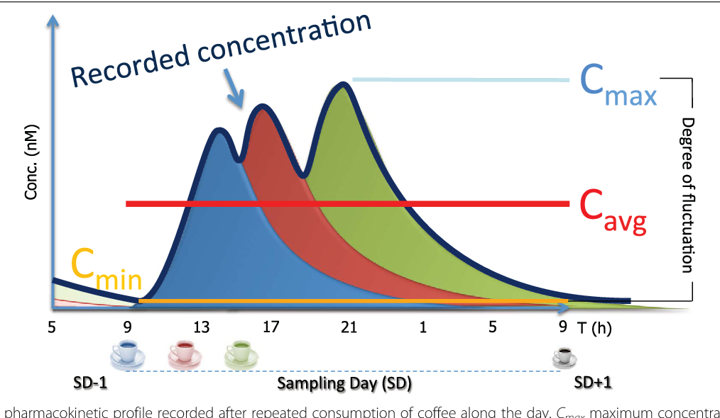Fig. 3 Modelled pharmacokinetic profile recorded after repeated consumption of coffee along the day. Cmax maximum concentration, Cavg average concentration, Cmin minimum concentration, SD sampling day