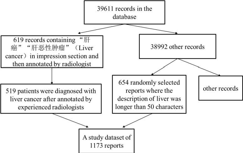 Figure 1 for A Natural Language Processing Pipeline of Chinese Free-text Radiology Reports for Liver Cancer Diagnosis