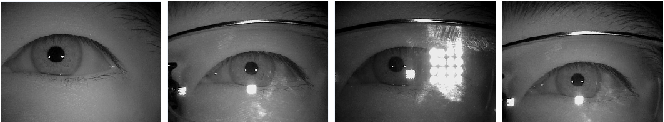 Figure 1 for An Experimental Study of Deep Convolutional Features For Iris Recognition