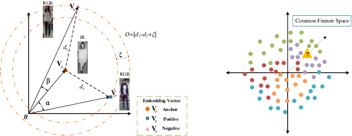 Figure 1 for Bi-directional Exponential Angular Triplet Loss for RGB-Infrared Person Re-Identification