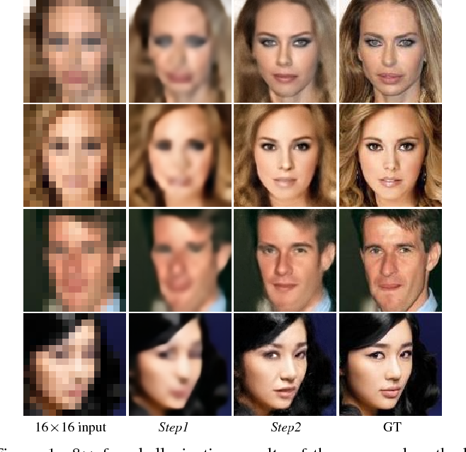 Figure 1 for Deep CNN Denoiser and Multi-layer Neighbor Component Embedding for Face Hallucination