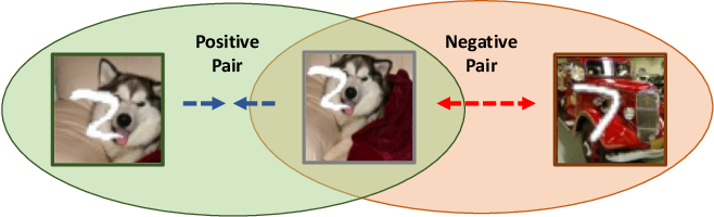 Figure 1 for Information-Preserving Contrastive Learning for Self-Supervised Representations