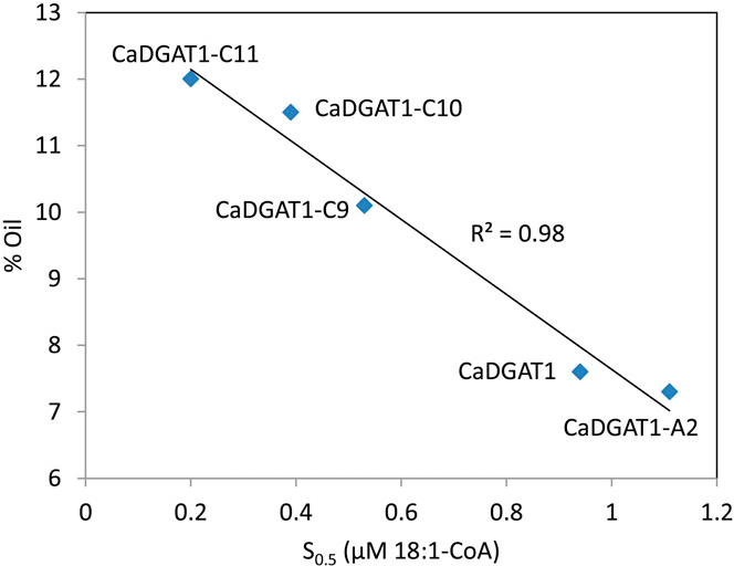 Figure 3. Correlation of DGATaffinity for 18:1-CoAwith oil content in soybean somatic embryos expressing CaDGAT1 variants.