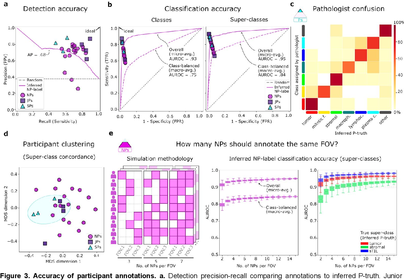 Figure 4 for NuCLS: A scalable crowdsourcing, deep learning approach and dataset for nucleus classification, localization and segmentation