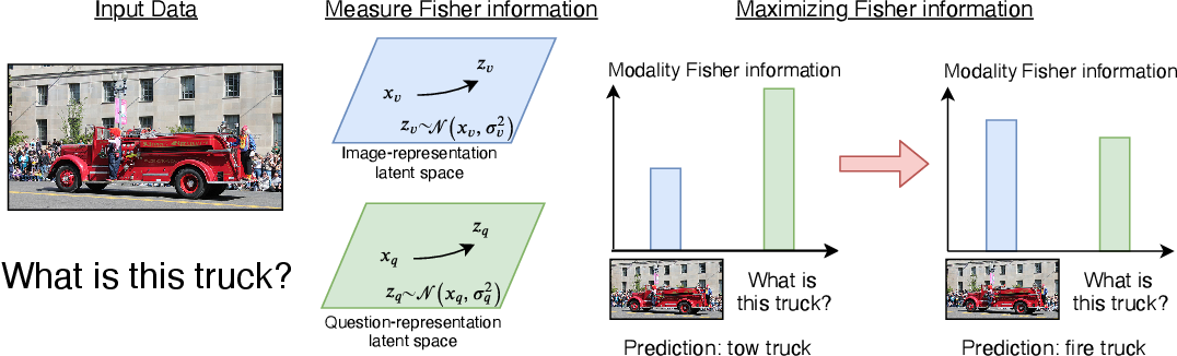 Figure 1 for Removing Bias in Multi-modal Classifiers: Regularization by Maximizing Functional Entropies