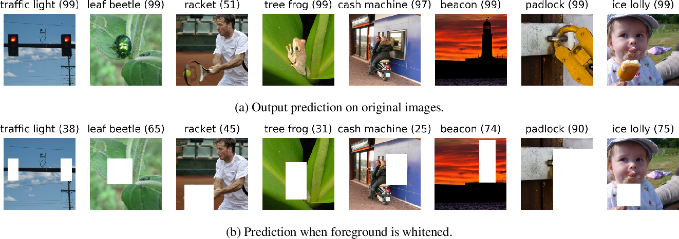 Figure 1 for Time for a Background Check! Uncovering the impact of Background Features on Deep Neural Networks