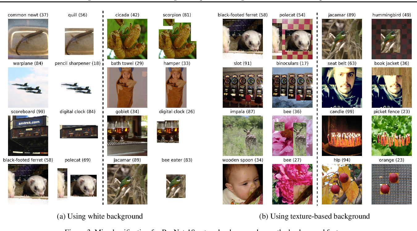 Figure 3 for Time for a Background Check! Uncovering the impact of Background Features on Deep Neural Networks