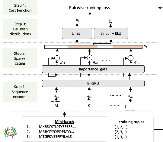 Figure 1 for Interpretable Structured Learning with Sparse Gated Sequence Encoder for Protein-Protein Interaction Prediction