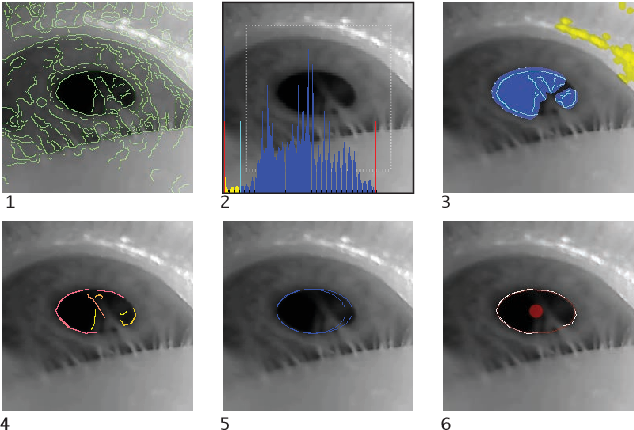 Figure 3 for Pupil: An Open Source Platform for Pervasive Eye Tracking and Mobile Gaze-based Interaction