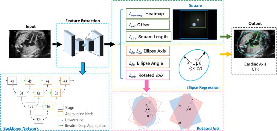 Figure 1 for EllipseNet: Anchor-Free Ellipse Detection for Automatic Cardiac Biometrics in Fetal Echocardiography