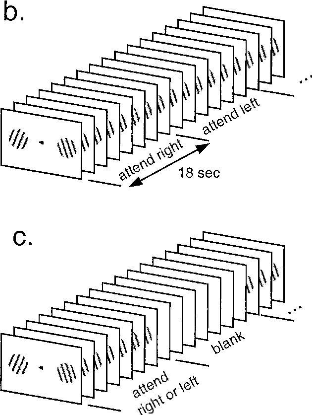 Spatial attention affects brain activity in human primary visual figure 1 ccuart Images