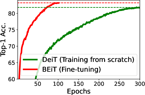Figure 4 for BEiT: BERT Pre-Training of Image Transformers