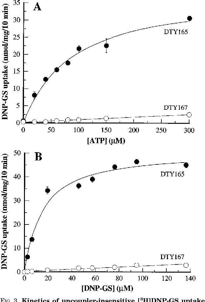 Table II from The yeast cadmium factor protein (YCF1) is a