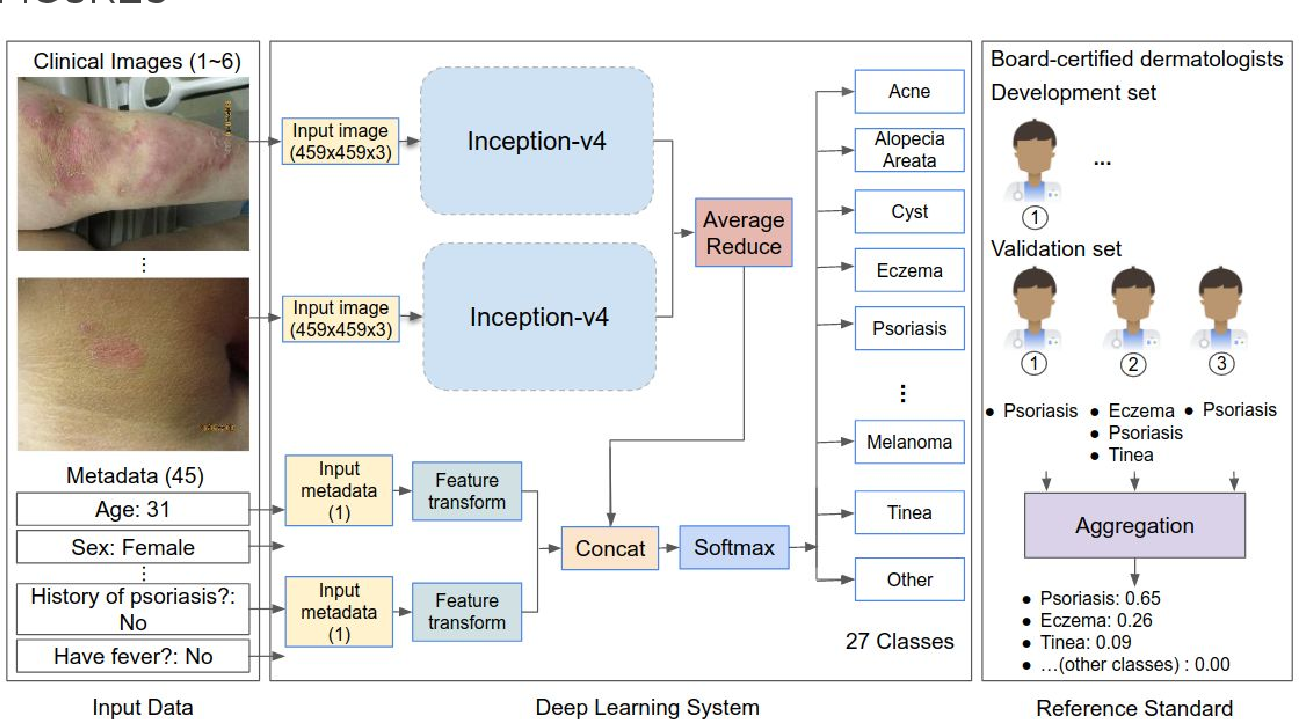 Figure 1 for A deep learning system for differential diagnosis of skin diseases