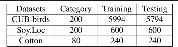 Figure 2 for Feature Fusion Vision Transformer for Fine-Grained Visual Categorization