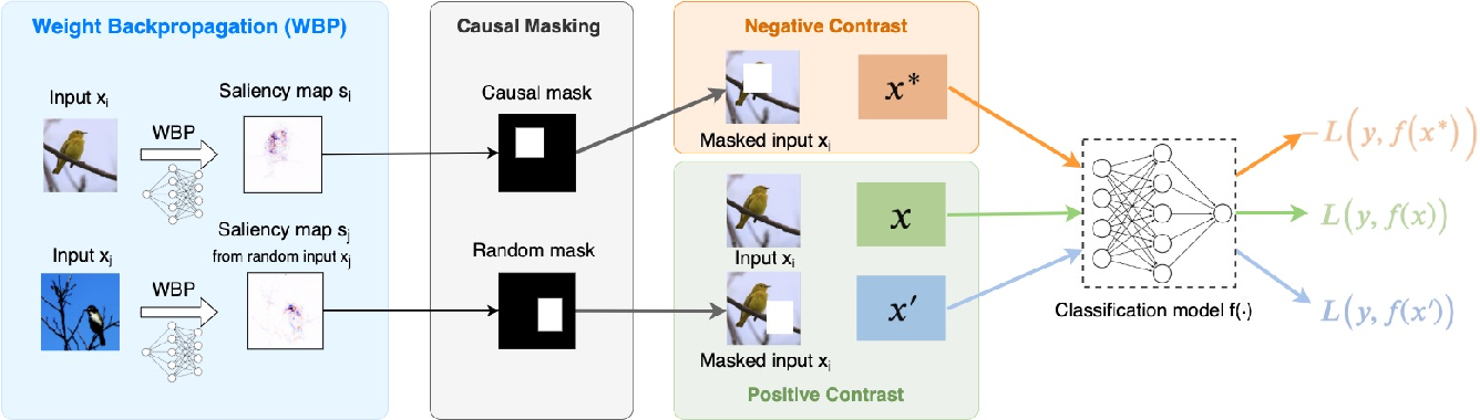 Figure 3 for Proactive Pseudo-Intervention: Causally Informed Contrastive Learning For Interpretable Vision Models