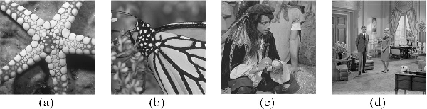 Figure 1 for Mixed-Resolution Image Representation and Compression with Convolutional Neural Networks