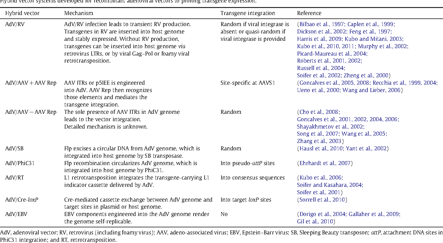Table 1 from Development of hybrid viral vectors for gene therapy