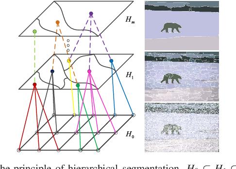 Figure 3 for Adaptive Morphological Reconstruction for Seeded Image Segmentation