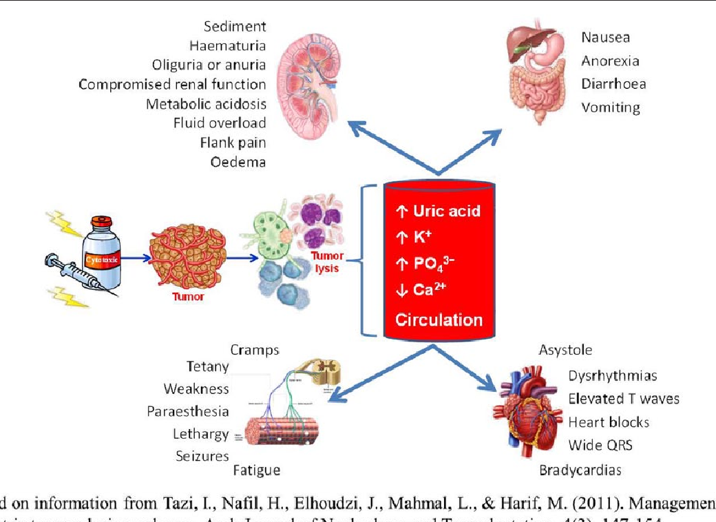 Figure 1 From Effective Prevention And Management Of Tumor