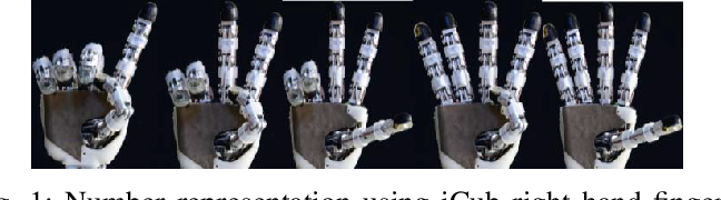 Figure 1 for A Deep Neural Network for Finger Counting and Numerosity Estimation