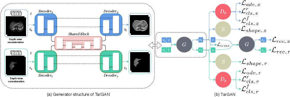 Figure 3 for TarGAN: Target-Aware Generative Adversarial Networks for Multi-modality Medical Image Translation