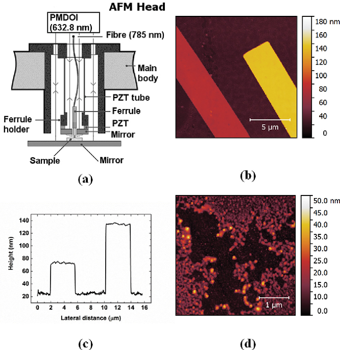 PDF] Traceable atomic force microscopy of high-quality solvent-free