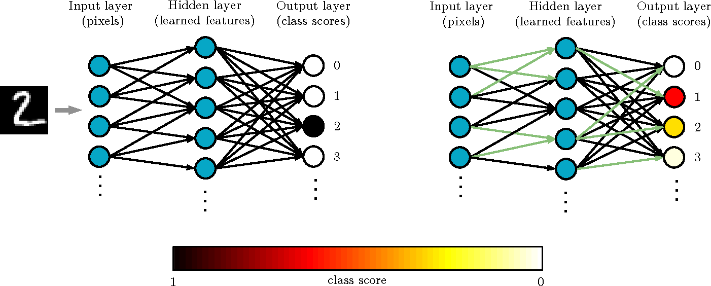 Figure 1 for Modeling cognitive deficits following neurodegenerative diseases and traumatic brain injuries with deep convolutional neural networks