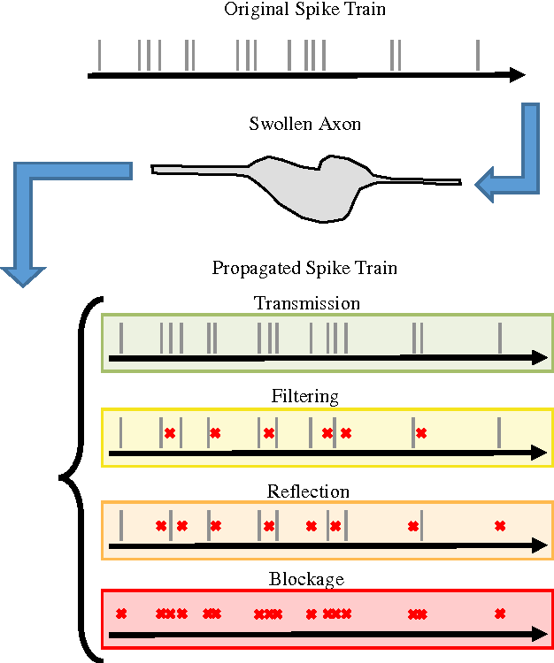 Figure 3 for Modeling cognitive deficits following neurodegenerative diseases and traumatic brain injuries with deep convolutional neural networks