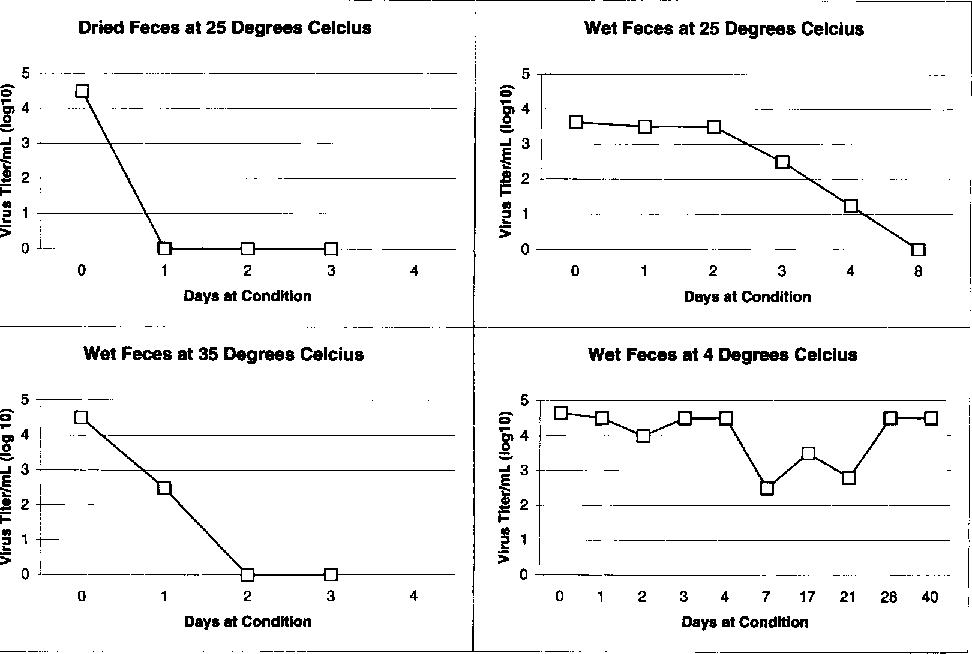 FIG. 3. Stability of A/Hong Kong/156/97 (H5N1) at environmental temperatures.