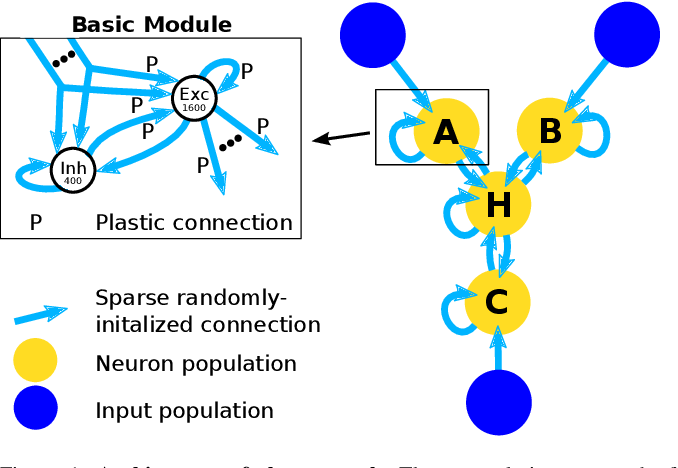 Figure 1 for Learning and Inferring Relations in Cortical Networks