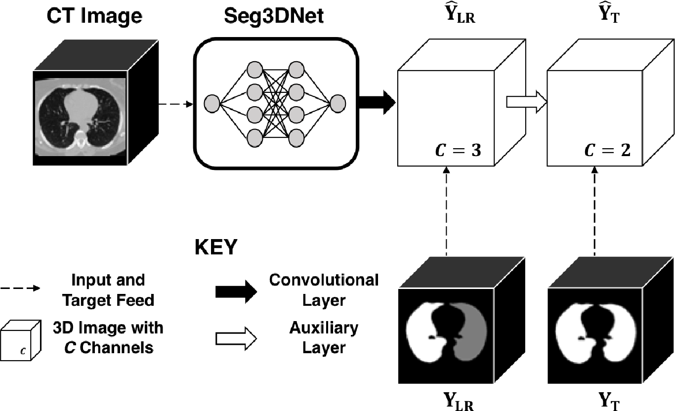Figure 3 for CT Image Segmentation for Inflamed and Fibrotic Lungs Using a Multi-Resolution Convolutional Neural Network