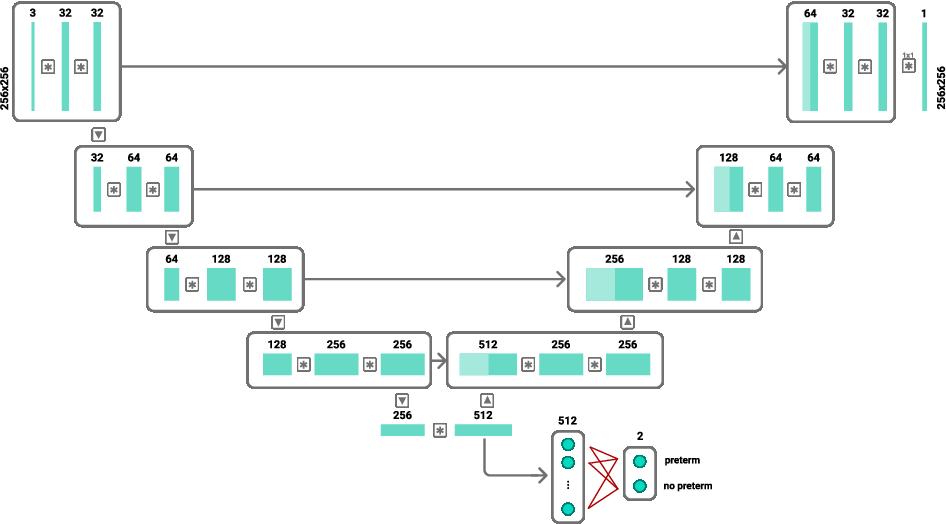 Figure 2 for Spontaneous preterm birth prediction using convolutional neural networks