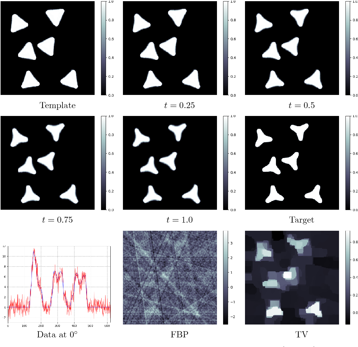 Figure 3 for Indirect Image Registration with Large Diffeomorphic Deformations