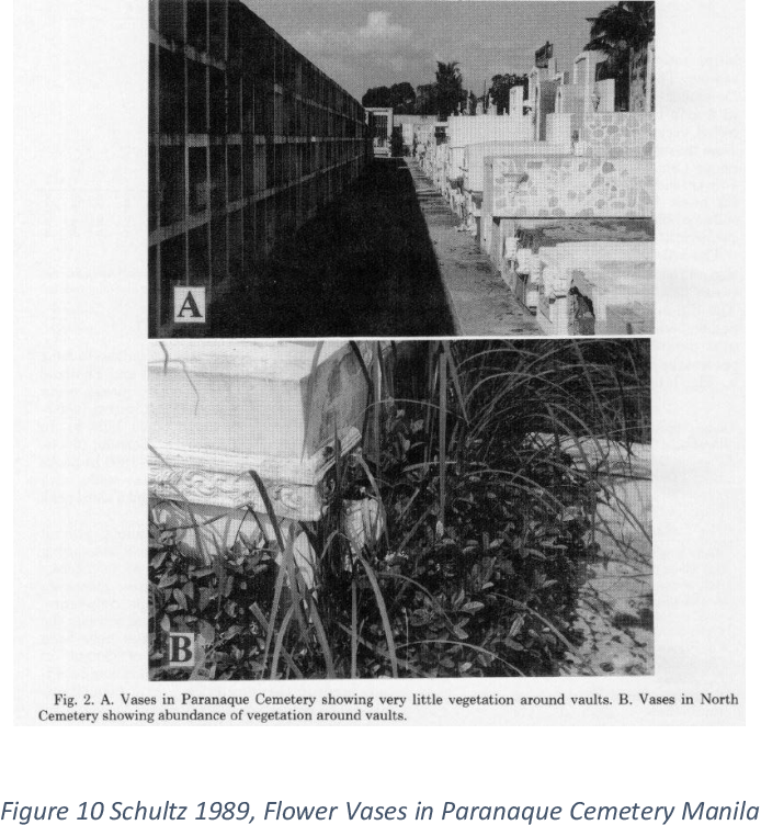 PDF] Aedes aegypti and Dengue in the Philippines: Centering