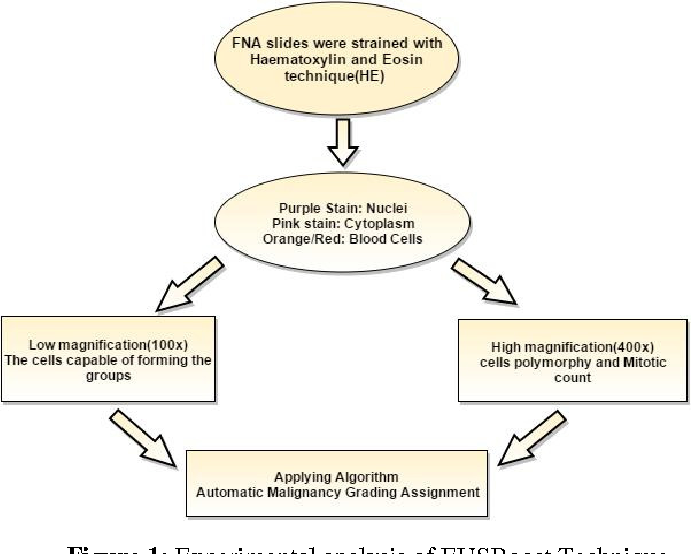 Figure 1 for Ensemble classifier approach in breast cancer detection and malignancy grading- A review
