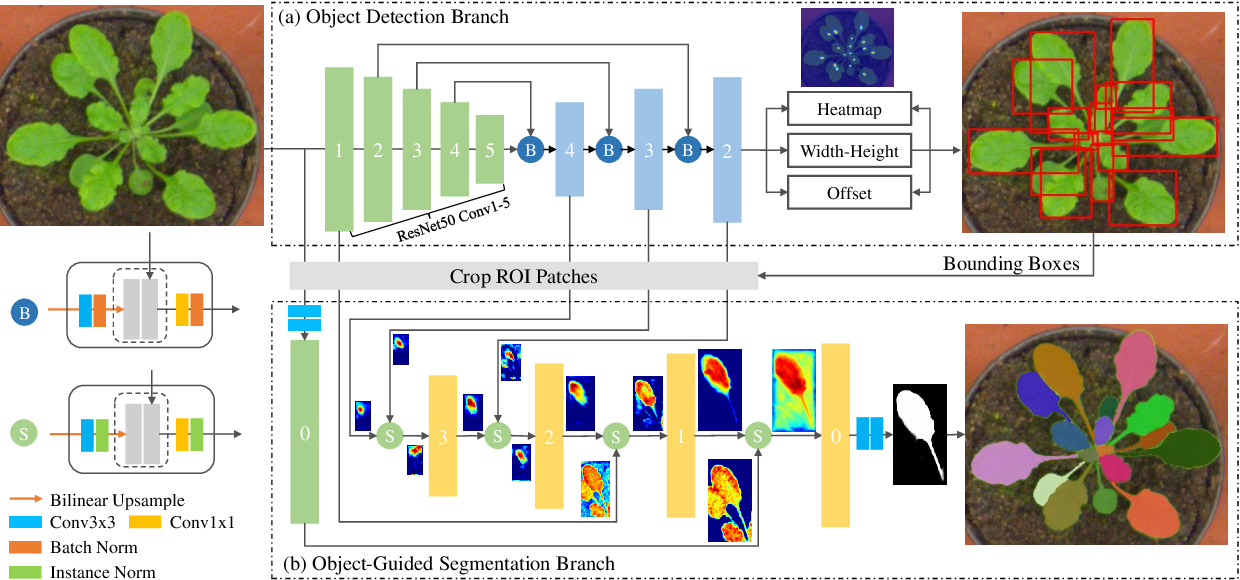 Figure 1 for Object-Guided Instance Segmentation for Biological Images