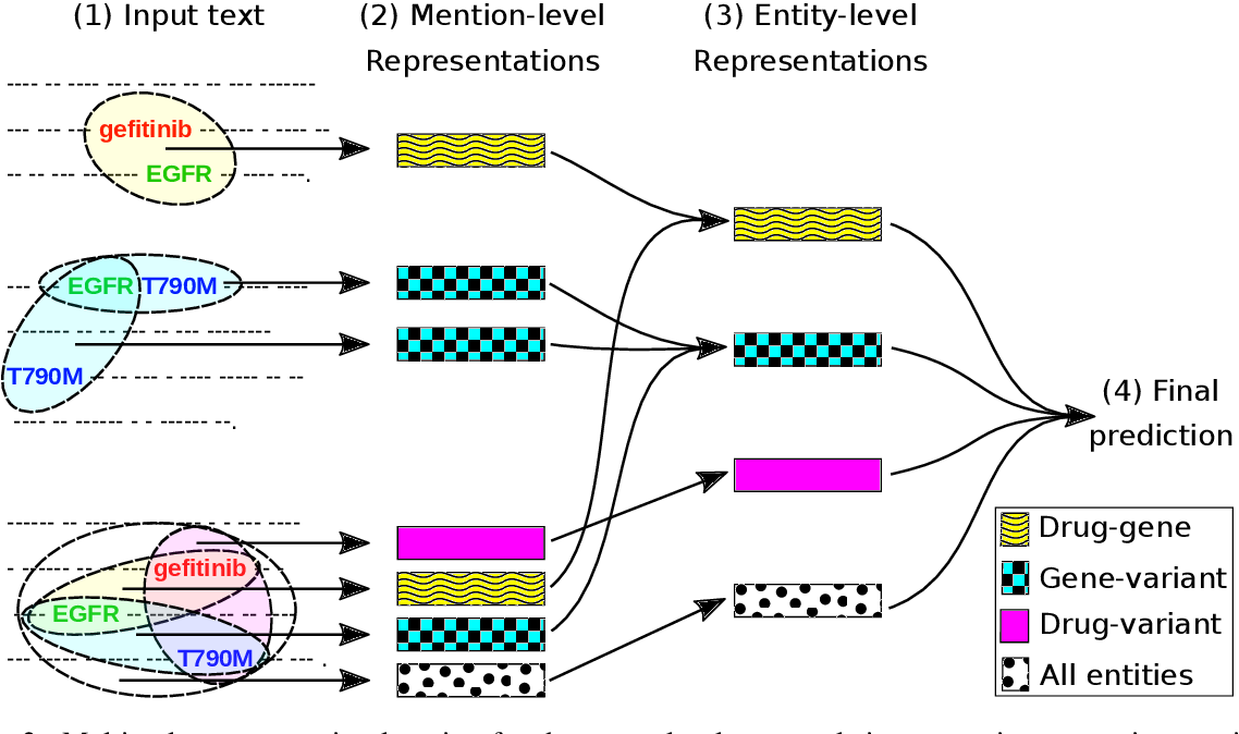 Figure 3 for Document-Level $N$-ary Relation Extraction with Multiscale Representation Learning