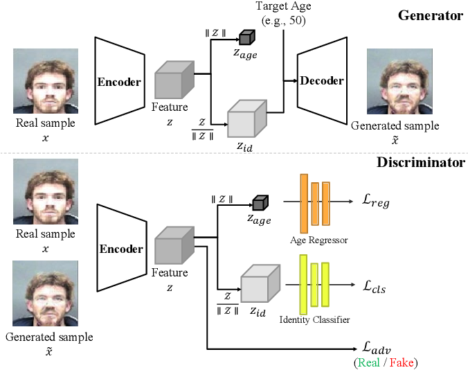 Figure 3 for Continuous Face Aging Generative Adversarial Networks