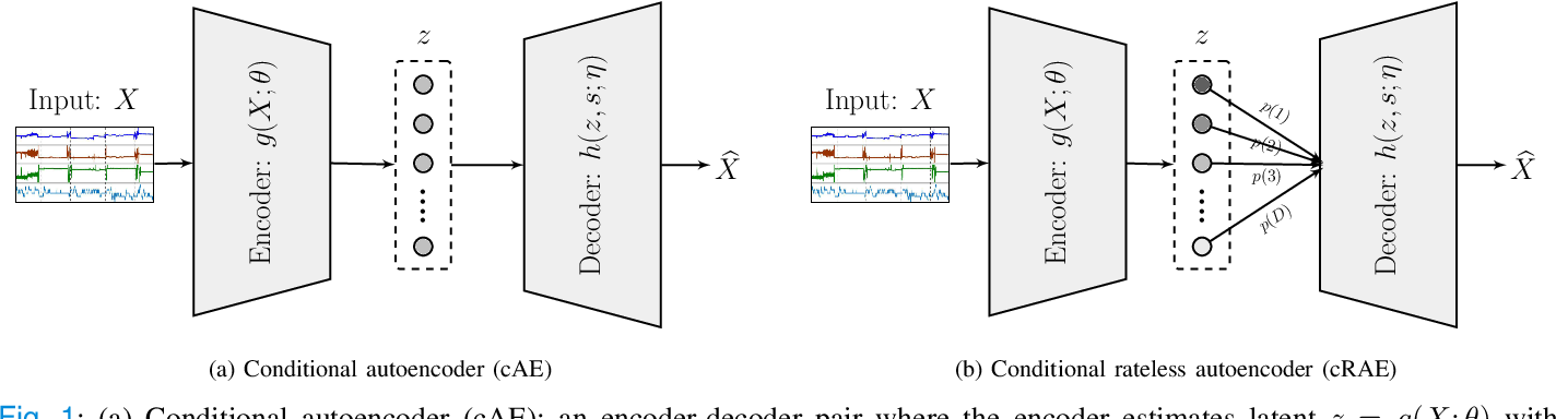 Figure 1 for Universal Physiological Representation Learning with Soft-Disentangled Rateless Autoencoders