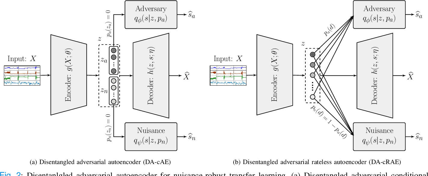 Figure 2 for Universal Physiological Representation Learning with Soft-Disentangled Rateless Autoencoders