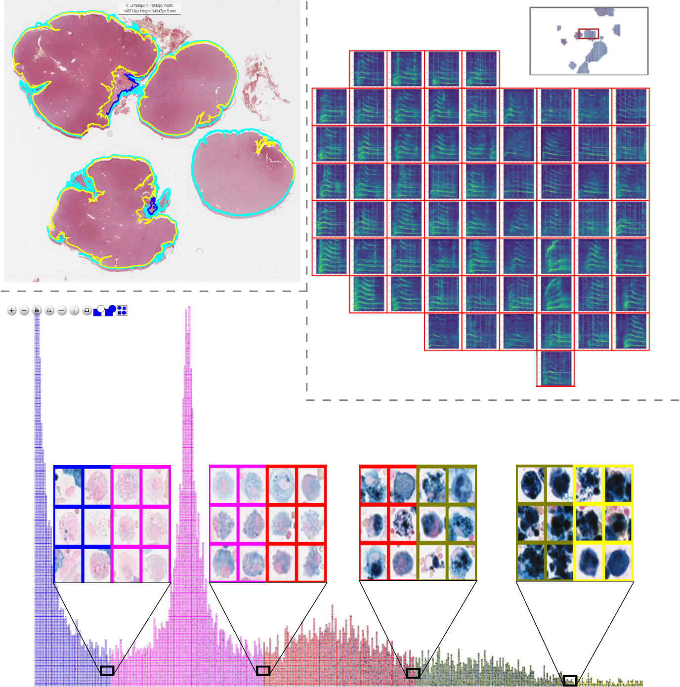 Figure 3 for EXACT: A collaboration toolset for algorithm-aided annotation of almost everything