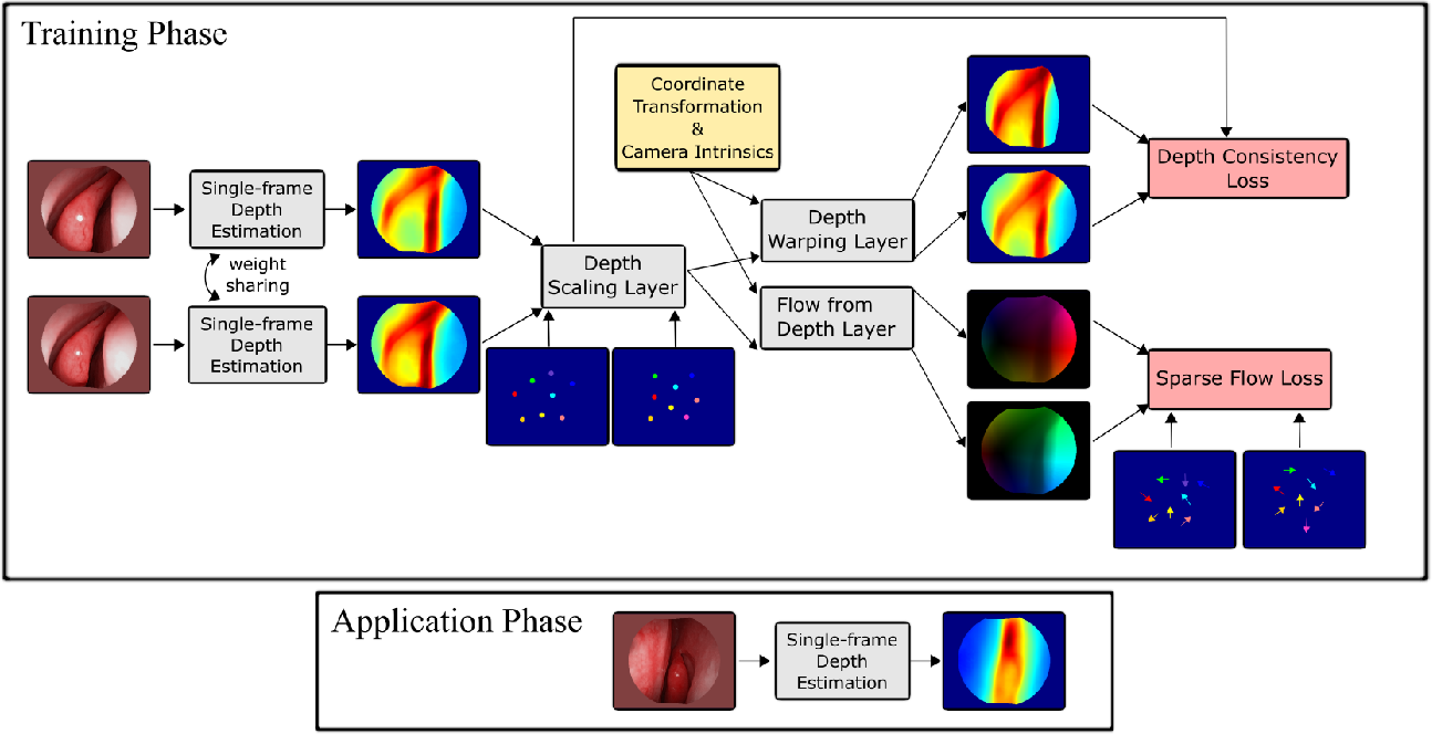 Figure 1 for Self-supervised Learning for Dense Depth Estimation in Monocular Endoscopy