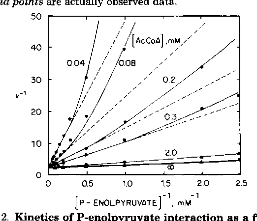 FIG. 2. Kinetics of P-enolpyruvate interaction as a function of acetyl coenzyme A concentration (AeCoA). Rate measurements were as described in Fig. 1. At low concentrations of acetyl coenzyme A, the P-enolpyruvate saturation curves were sigmoidal. Apparent K values were determined from the linear portion of the reciprocal curves only. The solid triangles (A) and bold line represent a plot of V i & values from Fig. 1.