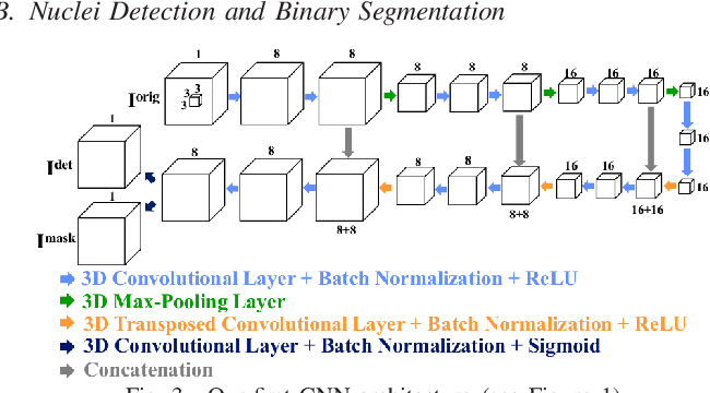 Figure 2 for Center-Extraction-Based Three Dimensional Nuclei Instance Segmentation of Fluorescence Microscopy Images