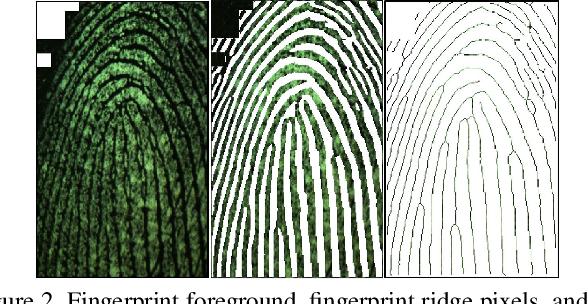 Figure 3 for Fingerprint Presentation Attack Detection utilizing Time-Series, Color Fingerprint Captures