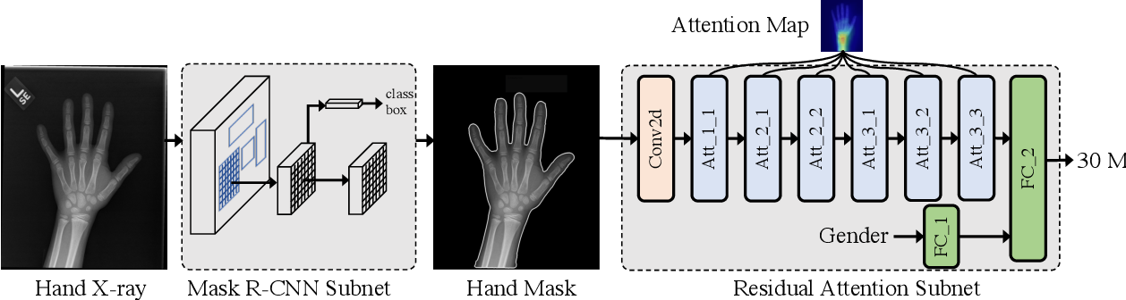 Figure 3 for Residual Attention based Network for Hand Bone Age Assessment