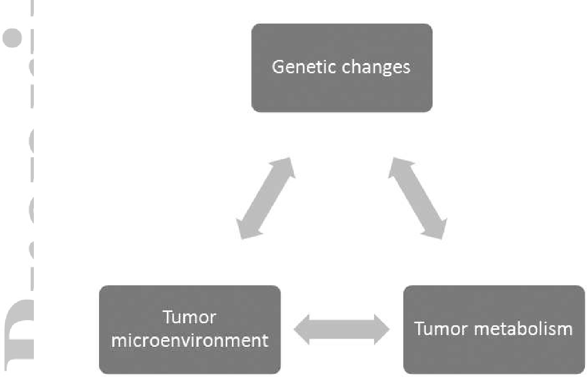 Anticancer drugs that target metabolism: Is dichloroacetate the new